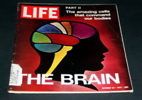 LIFE MAGAZINE OCTOBER 22 1971 THE BRAIN