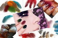 10 Dyed Guinea Fowl Feathers Nail art Crafts for Manicure Jewellery