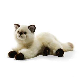 Plush & Company 05935 Peluche Gatto Siamese L 40 cm cat Chat Siamoise