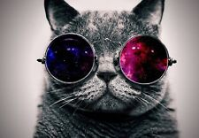 FUNNY CAT ABSTRACT GREY ANIMAL PSYCHEDELIC POSTER/CANVAS PICTURE PRINTS