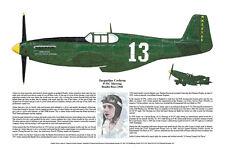 P-51 Mustang Racer #13 Jackie Cockran, Aviation Art Prints, Ernie Boyette