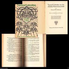 Museales Sammlerstück 1922 Magische Lehrsätze Okkultes Heilkunst Wesensgesetze