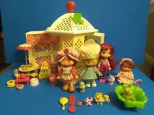29 piece Strawberry Shortcake playset