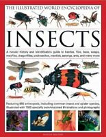 Illustrated World Encyclopedia of Insects : A Natural History and Identificat...
