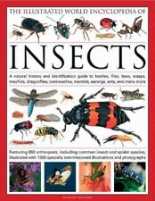 Illustrated World Encyclopedia of Insects : A Natural History and Identificat.