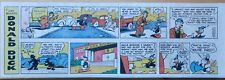 Donald Duck by Walt Disney - lot of 15 quarter-page Sunday comics from 1979