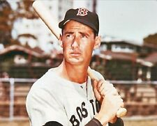 Ted Williams--Boston Red Sox--8x10 Glossy Color Photo