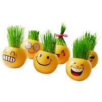 Ceramics Magic Grass Plant Pot Grass Head Doll Toy Kid Education Christmas SM