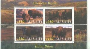 Malawi 2010 M/S American Bisons Animals Fauna Nature Cows OX Mammal Stamps MNH