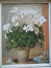 Still life flowers, blanc cyclamen et fruits. gm jamieson, mis en vente