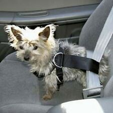 Pet Seat Belt Small Dog