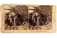 Italia Messina Terremoto Da Terra 1909 Ruines Foto Stereo Vintage Albumina