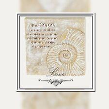Meisterkoch Türschild Wandschild Schild Spruch Metallschild Koch Küche