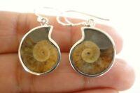 Fossil Ammonite 925 Sterling Silver Dangle Hook Earrings