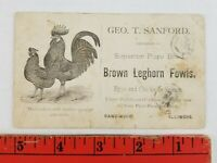Vintage 1900's Brown Leghorn Fowls Chicken Farm Sandwich Illinois Business Card