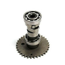Camshaft (stock) for GY6 125cc, 150cc Scooter Motor ATV 152QMI 157QMJ