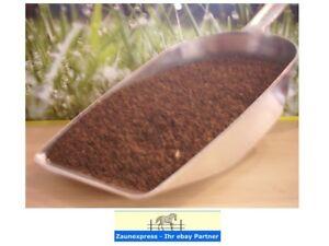 9,25€/kg Phacelia 2kg Beutel Bienenweide Gründüngung Saatgut