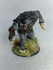 Werewolf Painted Miniature for D&D or Pathfinder Fantasy RPG
