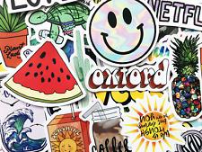 50 Mixed Colors Sticker Lot Book Fun Pack Skateboard Laptop Car Decals