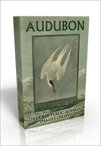 Audubon Animals & Birds - over 630 public domain pictures on DVD