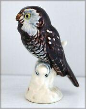 Chouette de Tengmalm en porcelaine allemande
