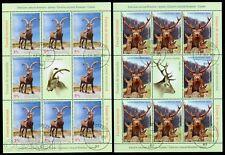 2012 Spanish wild Goat/Pyrenaica,Red Deer,Mountain fauna,Romania-Spain,6656KBVFU