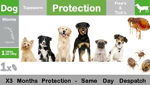 Large Dog up to 40Kg Flea Tick & Wormer / De-wormer 3 Month Protection 3 Day Del