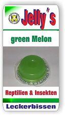 jelly alimentaire Dragon 20x16gr Gelée de fruits vert melon pour