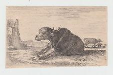 Stefano Della Bella - (Firenze 1610-1664) acquaforte da Diversi Animali