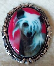 """Chinese Crested """"SeXy"""" Dog Portrait Porcelain Cameo Brooch & Pendant Destash New"""