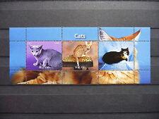 Katzen 15 cats Chats Tiere animals pets Fauna Block KB sheets postfrisch ** MNH