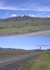 50.66 AC COWBOY LAND NV, CASH SALE OR $200 DOWN $377.11/MO. COUNTY RD, NEAR MTNS
