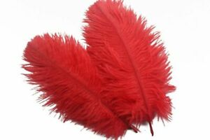 Weddings Flower Natural Ostrich Feathers Colorful Decoration Supplies 10 Pcs/Lot