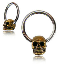 "PAIR OF 12g (2MM) 1/2"" INCH CBR BRASS SKULLS NIPPLE RINGS EAR SEPTUM GAUGE"