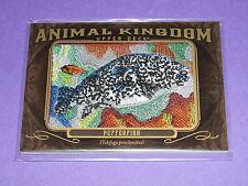 2013 Goodwin Champions Animal Kingdom PUFFERFISH #AK-225 / Tetraodontidae - Fugu