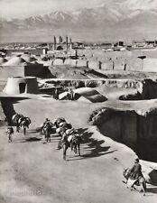 1934 Vintage 11x14 IRAN ~ Tehran Donkey Muslim Landscape Photo Art MITTELHOLZER