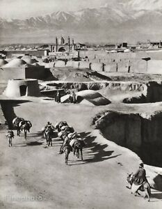 1934 Vintage IRAN Tehran Donkey Muslim Landscape Photo WALTER MITTELHOLZER 11x14