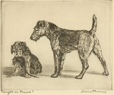 Airedale Terrier Dog With Pup by Diana Thorne 1935 Art Print Etching