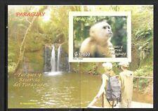 PARAGUAY Sc 2850 NH SOUVENIR SHEET of 2007 - ANIMALS - MONKEY