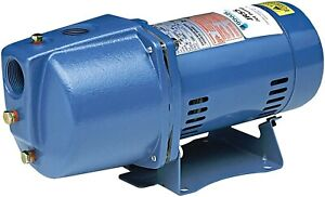 Goulds JRS10 1HP Shallow Water Well Jet Pump 115/230V, Single Phase