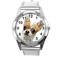 BEVERLY HILLS CHIHUAHUA FILM DOG PUPPY ANIMAL SILVER LEATHER Mexico DVD WATCH