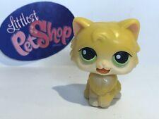 Authentic Littlest Pet Shop - Hasbro Lps - Persian Cat #Mm