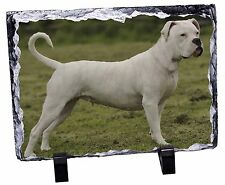 American Staffordshire Bull Terrier Dog Photo Slate Christmas Gift Or, AD-SBT9SL