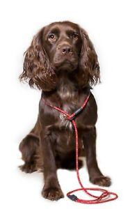 Pro Trialler Anti Twist Swivel Slip Lead by Dog & Field - Light Weight Braid