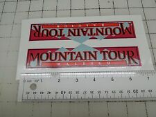 Raleigh Mountain Tour downtube decal