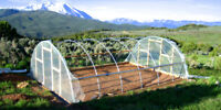 28 x 28 ft Greenhouse - Quonset Kit - Hoop House - Cold Frame - High Tunnel