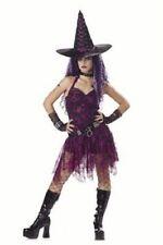 Witch Costume Funky Goth Rockin Witch 4Pc Blk/Purp Dress Belt Choker & Hat Sm