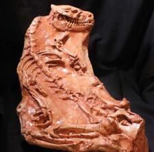 "OREODONT FOSSIL CAST ""Merycoiodon Gracilis"" - Oligocene Period 33 million years"