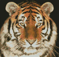 Tiger Head Complete Counted Cross Stitch Kit FREE P&P