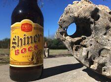 Large Natural Texas Holey Honeycomb Limestone Cave Rock Aquarium Terrarium